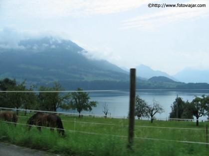estradas suicas