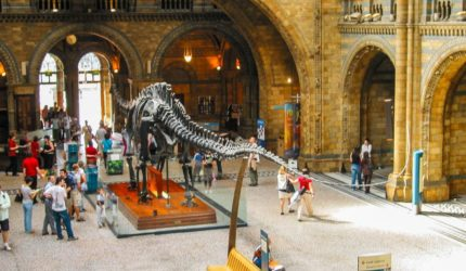 museu historia natural londres