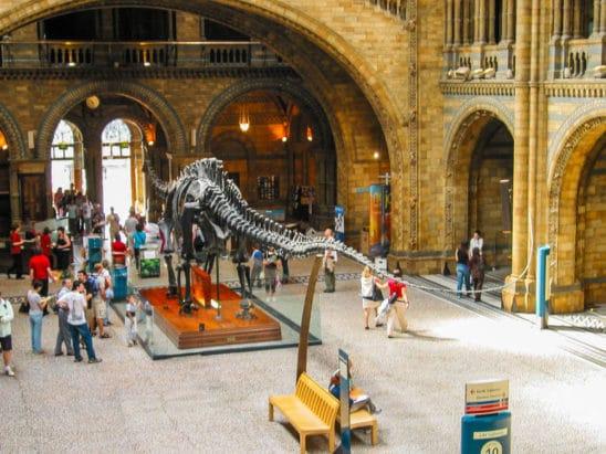 Natural History Museum / Museu de História Natural, Londres