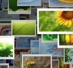 Onde Imprimir Fotos Digitais Loja Online De Fotografia