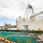 porto grindavik islandia