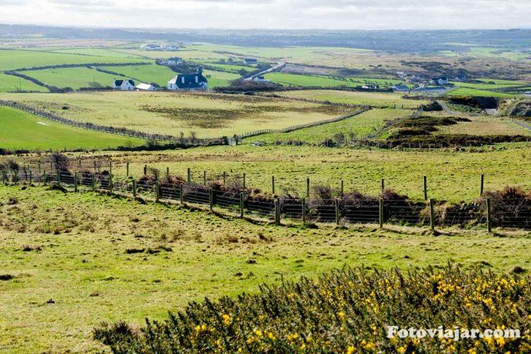 campos irlanda