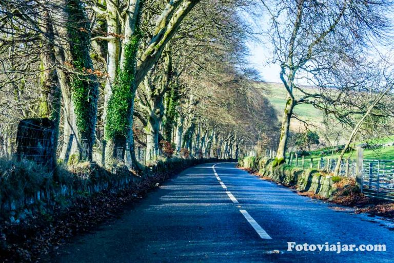 conduzir irlanda estrada