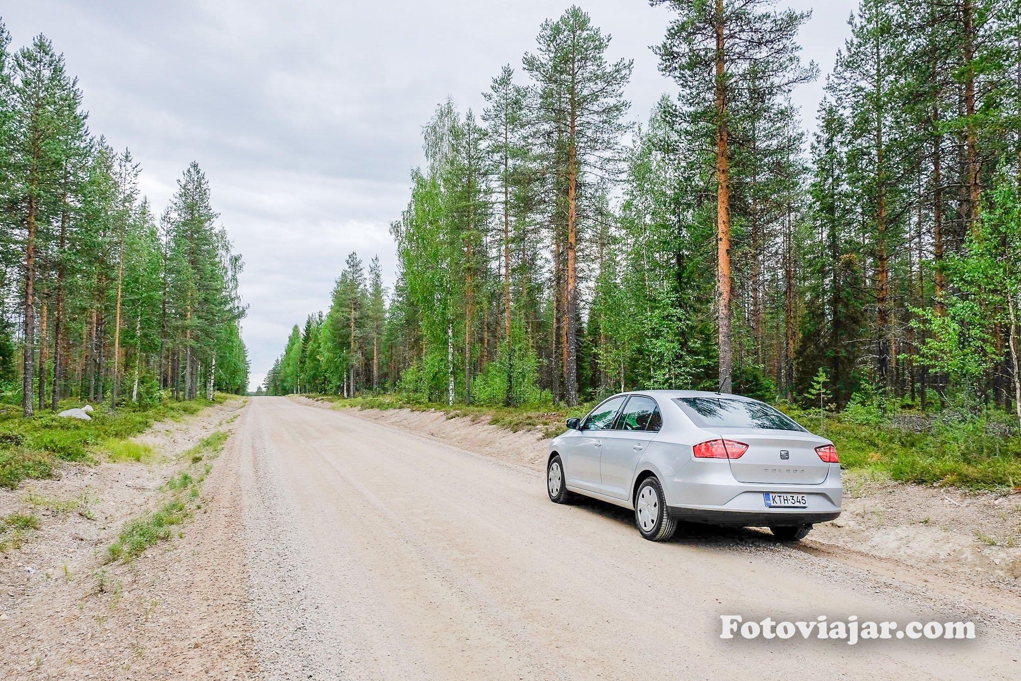 floresta finlandia