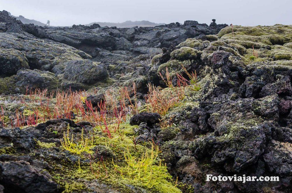 campos lava islandia